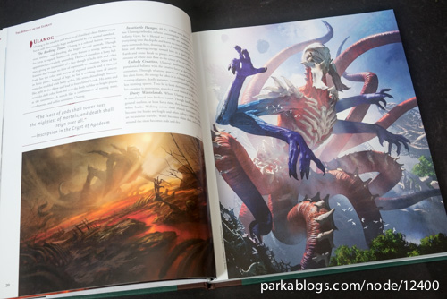 Pohled na knihu The Art of Magic: the Gathering: Zendikar 1