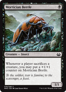 Mortitian Beetle
